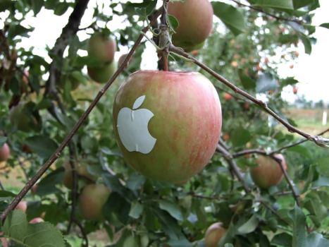 Maça com um simbolo da Apple tomando um solzinho...